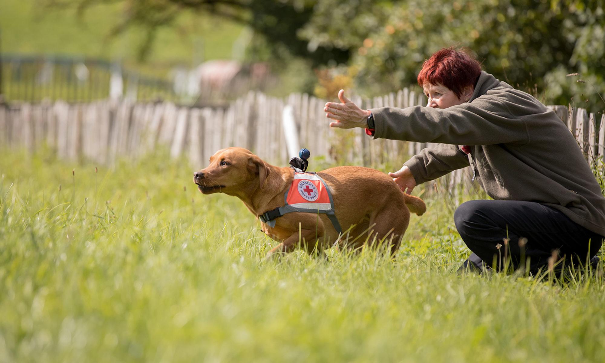 Rettungshundestaffel Hof